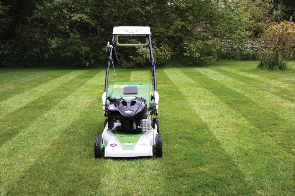 Cut, Collect And Now Stripe With Etesia