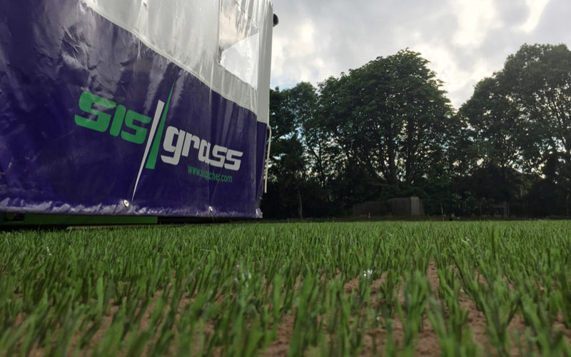 First industry 'Oscar' for SISGRASS