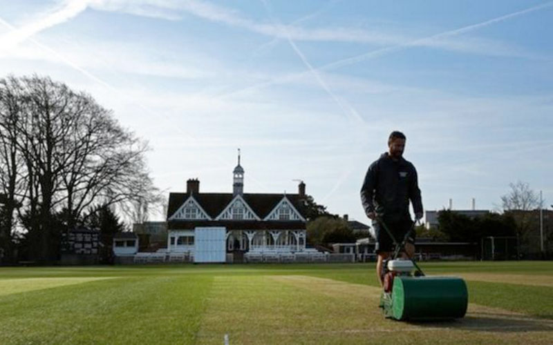 How do you prepare a cricket pitch?