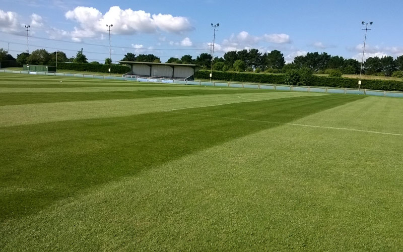 Council groundsman 'works smart'