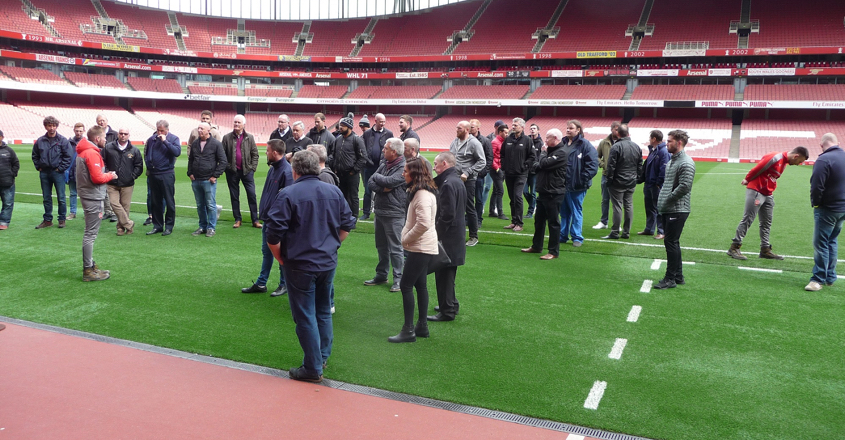 Emirates Stadium success with DLF seed mixtures