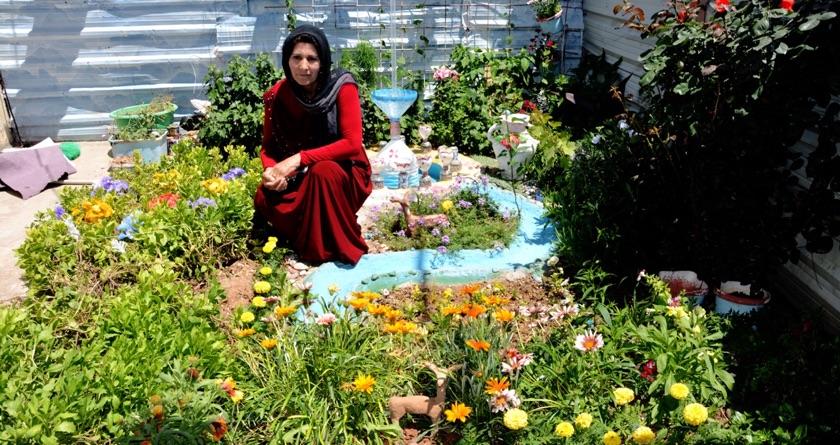 Refugee garden competition