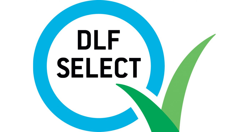 DLF Select programme shows quality