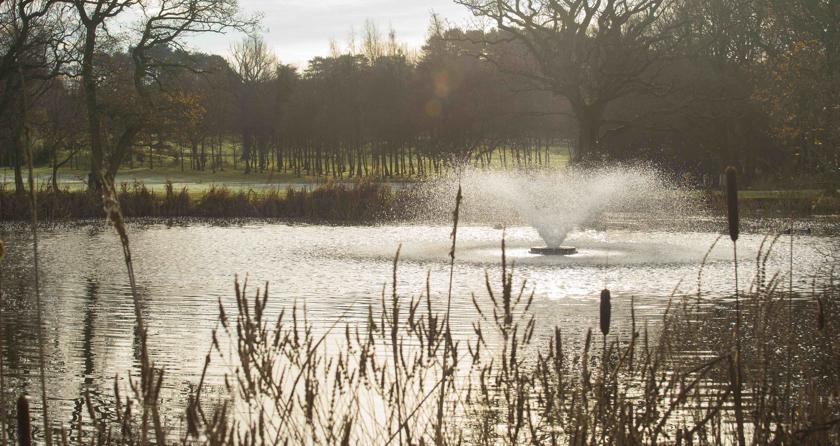 Otterbine at heart of Ladbrook Park