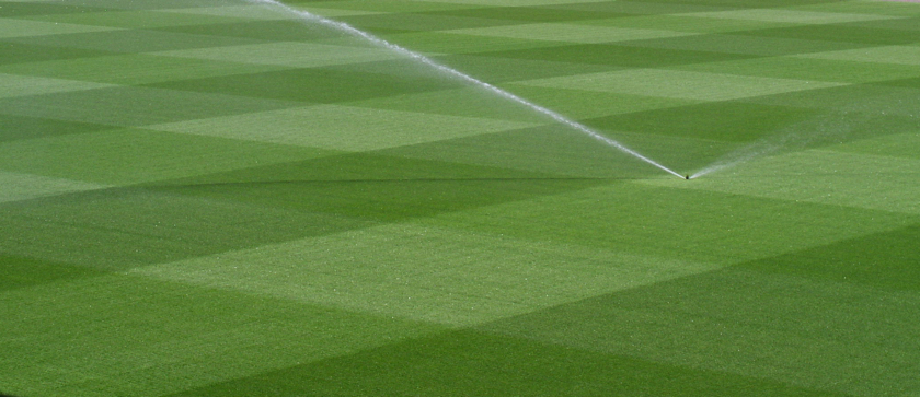 Top perennial ryegrass joins A20 squad