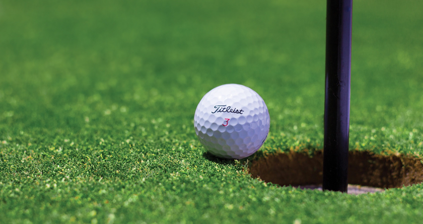 Preventative approach helps turf ahead of renovations