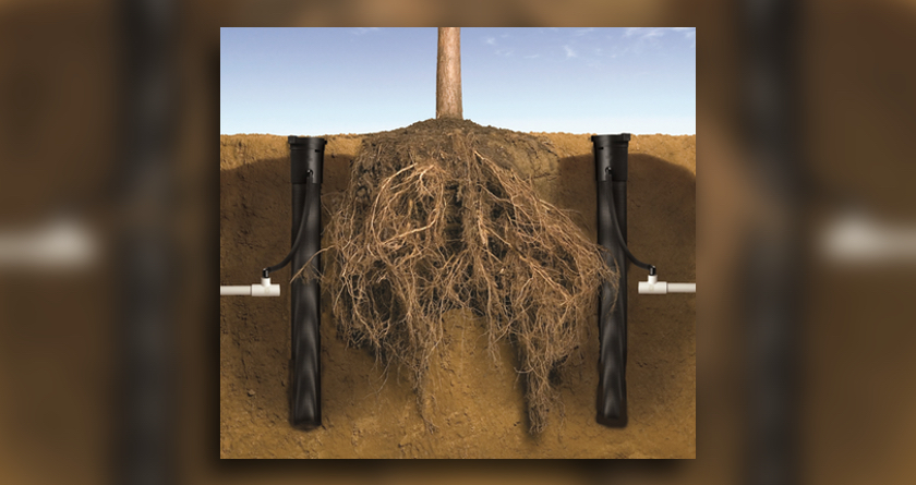 Rain Bird's root watering system protects the investment
