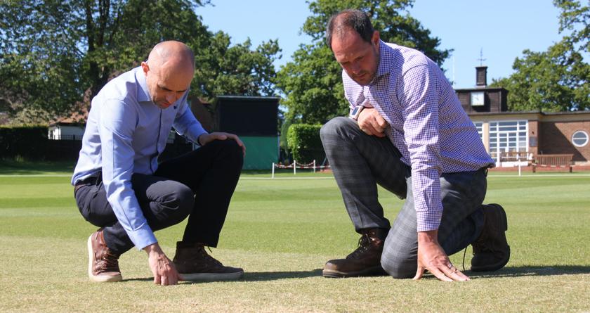 Grade-A results for cricket wickets at Sevenoaks School
