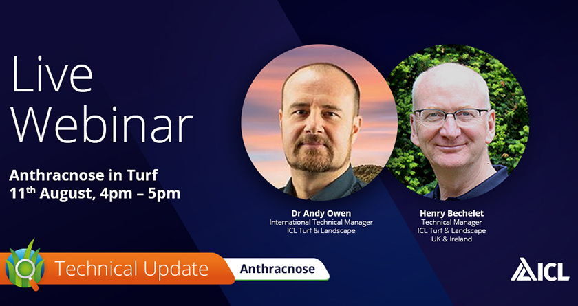 ICL to host Anthracnose Webinar