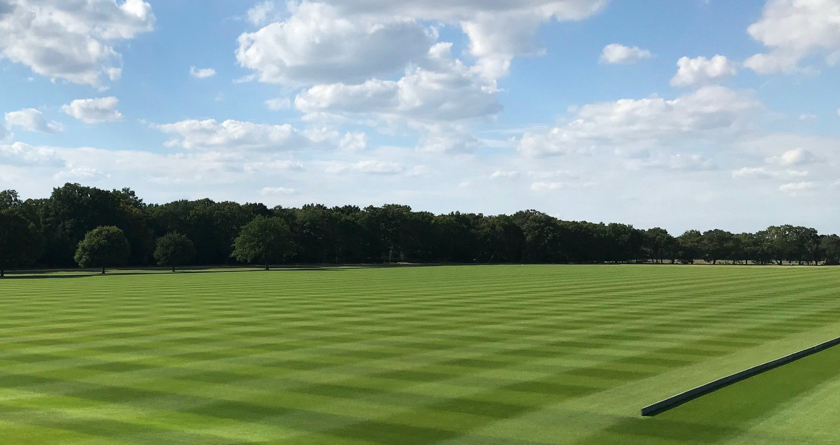 Billingbear Polo Club's form improves thanks to bespoke PRG mix from DLF