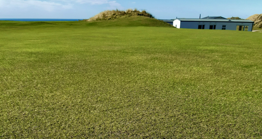 100% fescue from Johnsons delivers 100% satisfaction for Perranporth GC