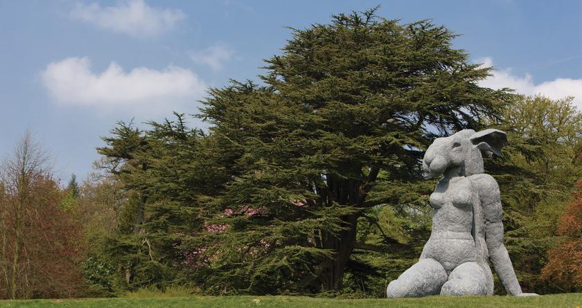 Terrain's deep aeration in Yorkshire Sculpture Park
