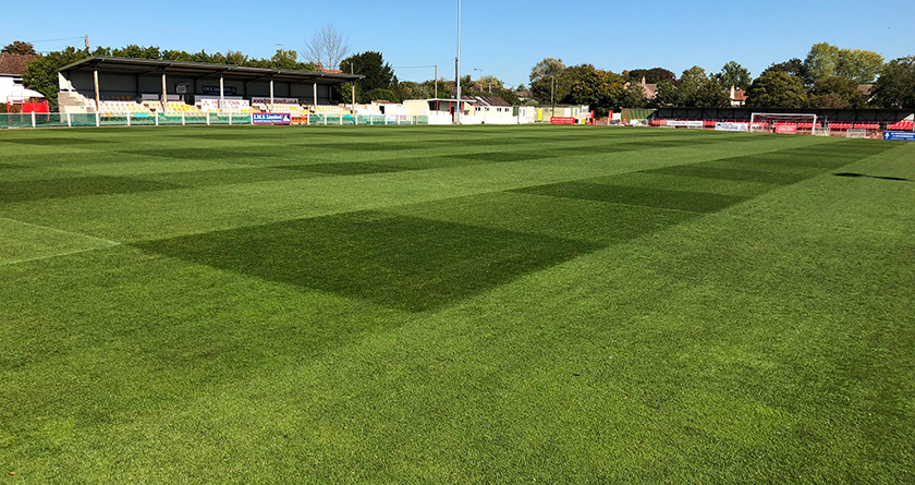 A Masterline mix for all surfaces suits Greensward Sports Consultancy